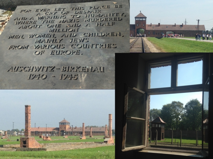 Auschwitz Birkenau.001.jpeg