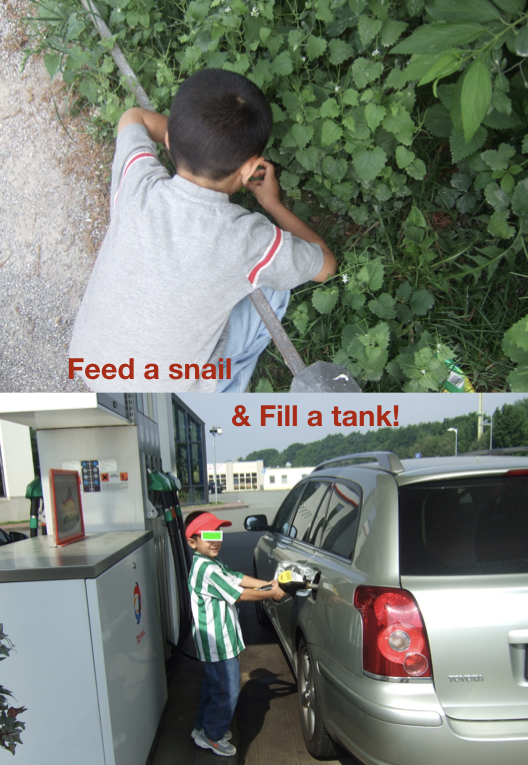 Feed a snail.png